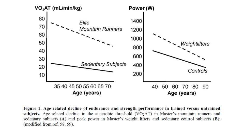 ההשפעה של כח השרירים שלנו על אריכות ימים