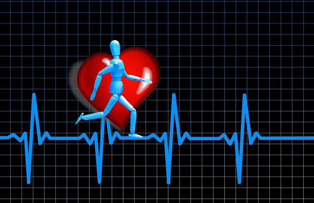 דיאטות עתירות שומן והשפעתן על בריאות הלב.
