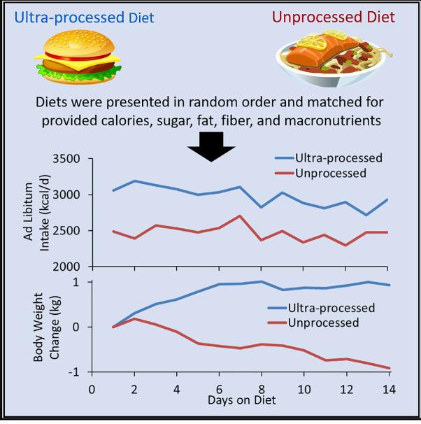 מזון מעובד , דיאטה , ופרקטיקה