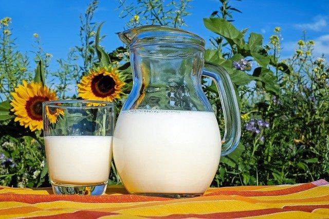 חלבון חלב לעומת אבקת חלבון- האם תוסף תמיד עדיף?